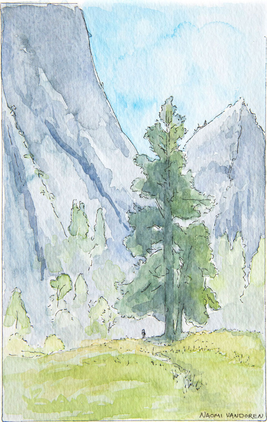 Yosemite Valley Sketch