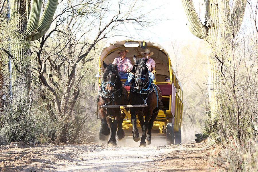 texas-ranch-photographer