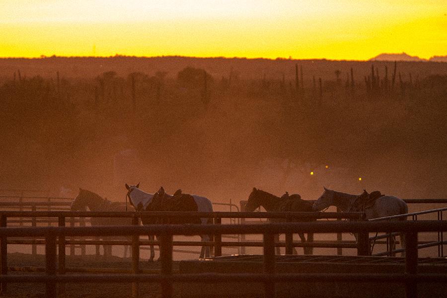 arizona-luxury-ranch-photographer