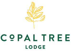 best-belize-resort-lodge-photography-photographer