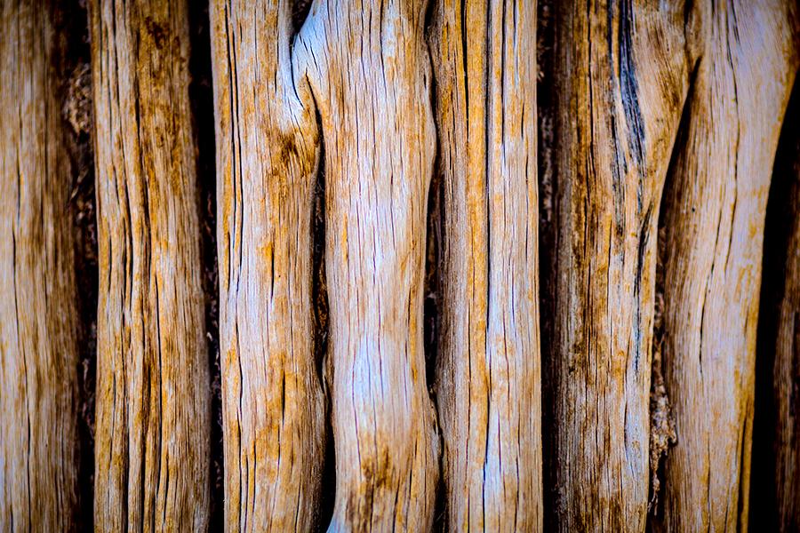 teton-valley-ranch-photographer