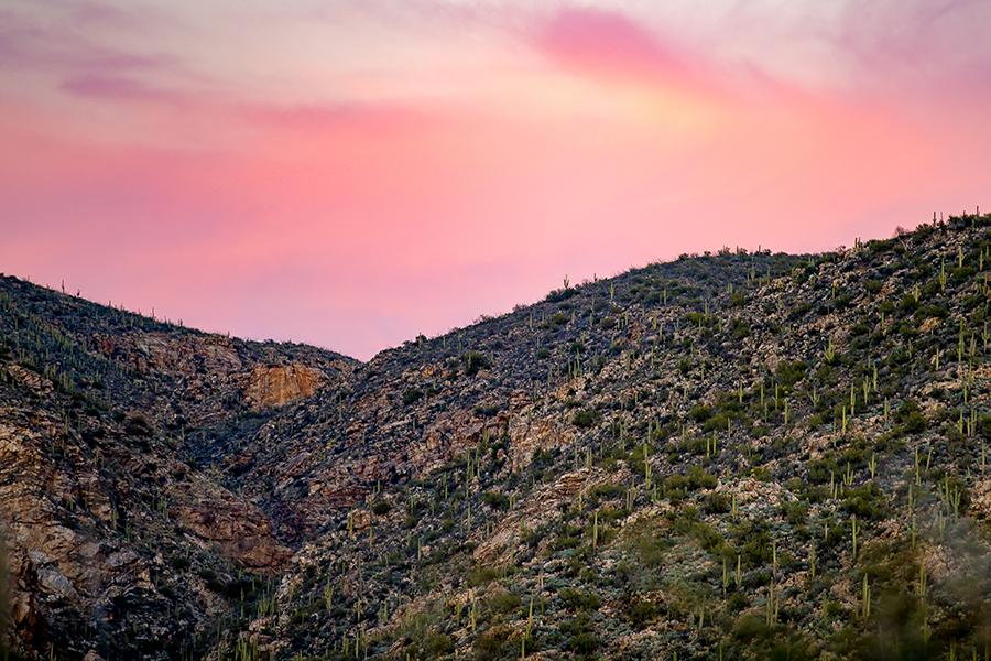 best-ranch-photographer-colorado