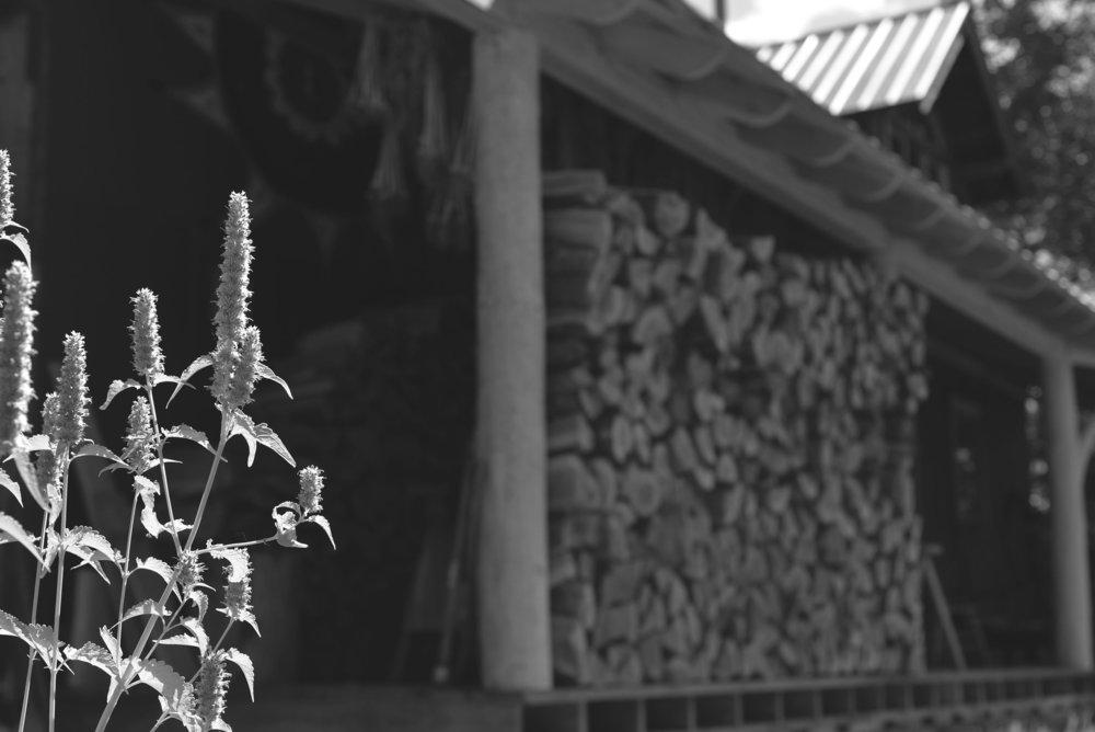 firewood 150.jpg