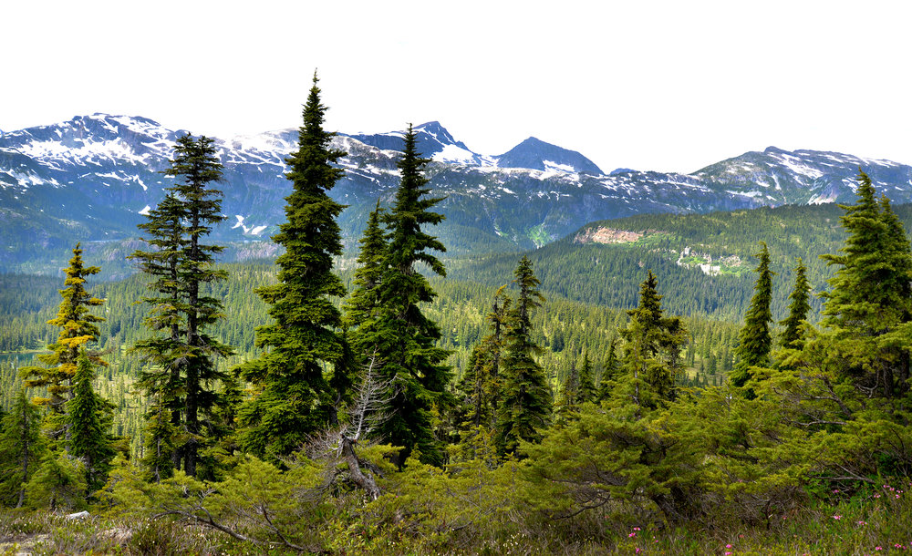 Mount Elma 150.jpg