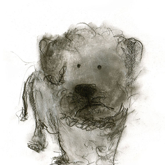 florence dog.jpg