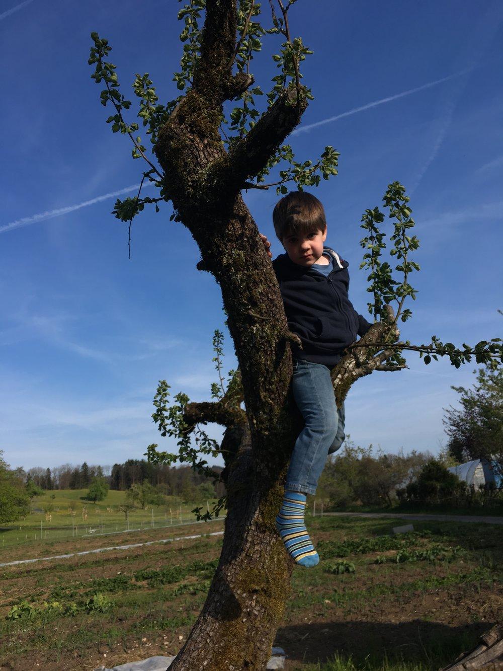 Nils erkundet die Welt aus der Höhe
