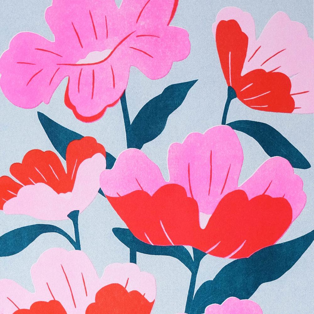 Poppies // Bella Gomez