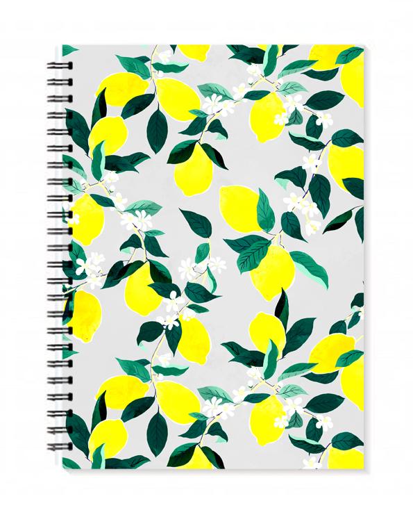 BellaGomez-diary-Sorrento1.jpg