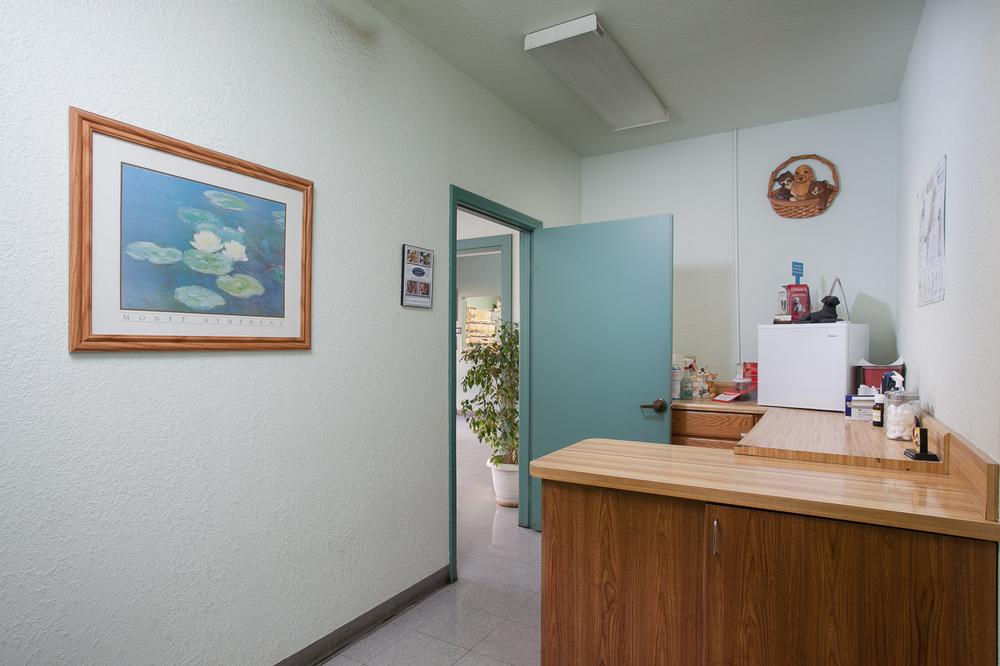 AAA Animal Hospital LORES-8.jpg