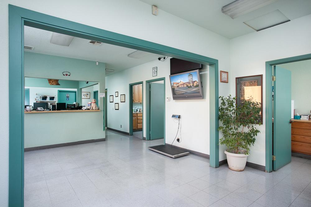 AAA Animal Hospital LORES-10.jpg