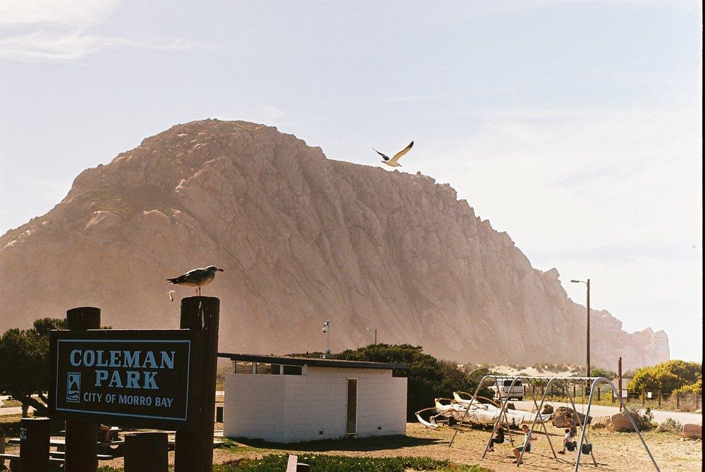View Morro Rock California Analogue Travel Photographer