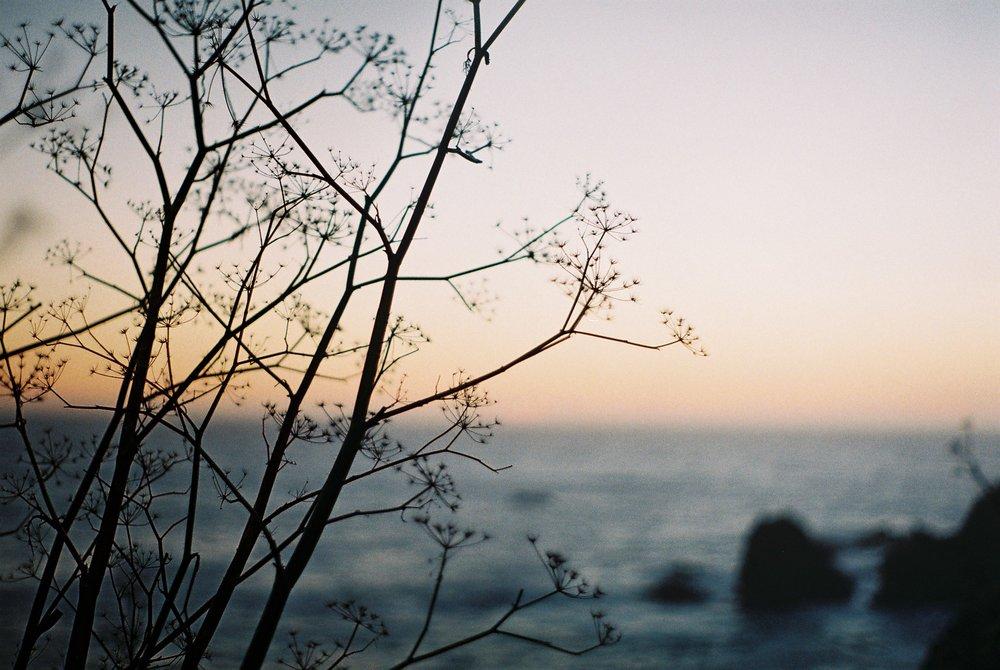 Sunset Highway 1 California Analogue Travel Photographer