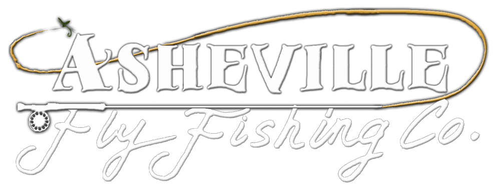 Fly Fishing Tours: Asheville, Western NC:Asheville Fly Fishing Company