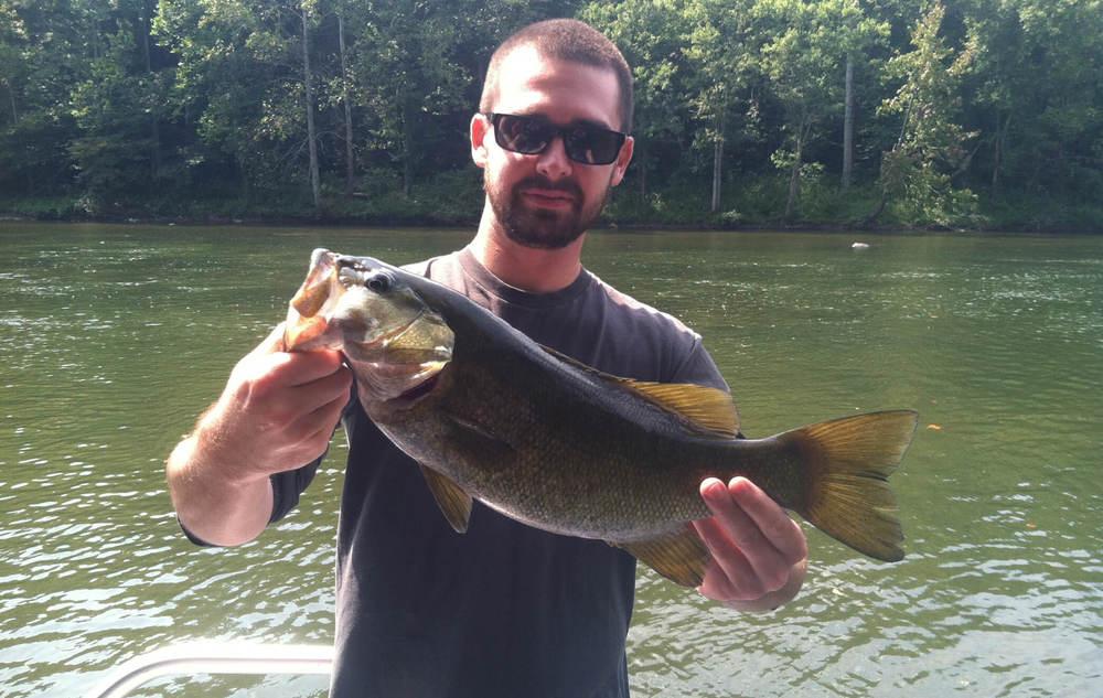 Copy of Smallmouth Bass - Asheville Fly Fishing Company