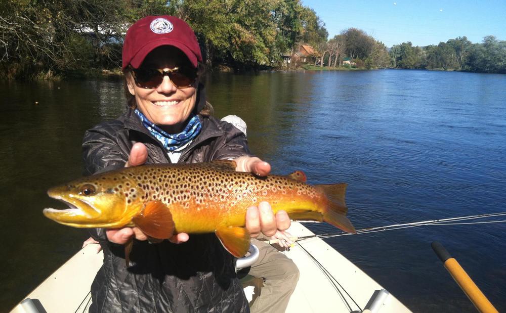 Copy of Watauga River - Asheville Fly Fishing Company