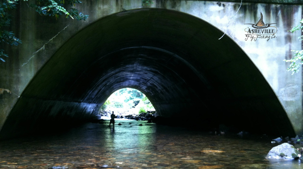 www.ashevilleflyfishingcompany.com/floattrips
