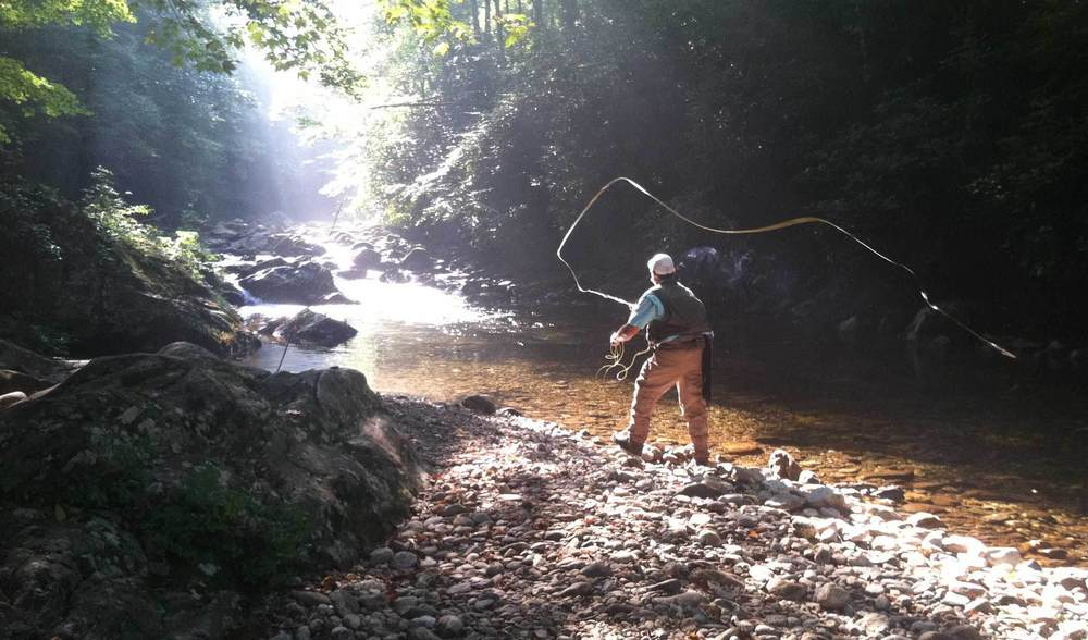 Guided Fly Fishing Backcountry Wade Trips