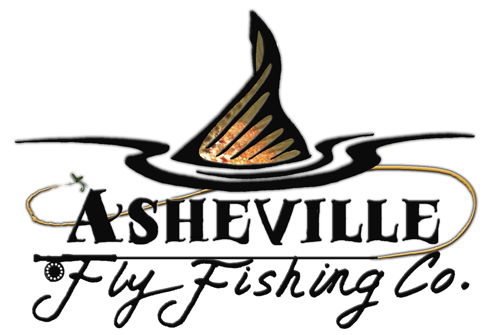 Spring fishing report fly fishing tours asheville for Fishing in asheville nc