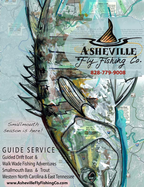 Smallmouth Bass - Asheville Fly Fishing Company