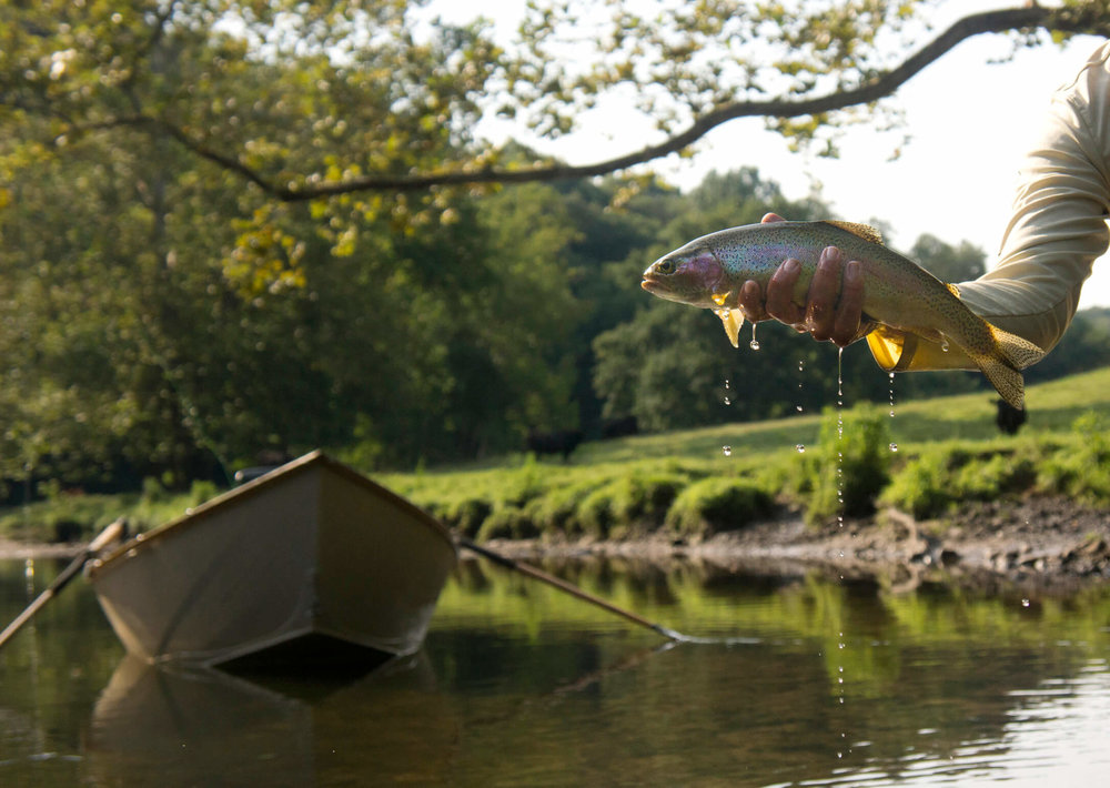 Asheville Fly Fishing Company - 1_41.jpg