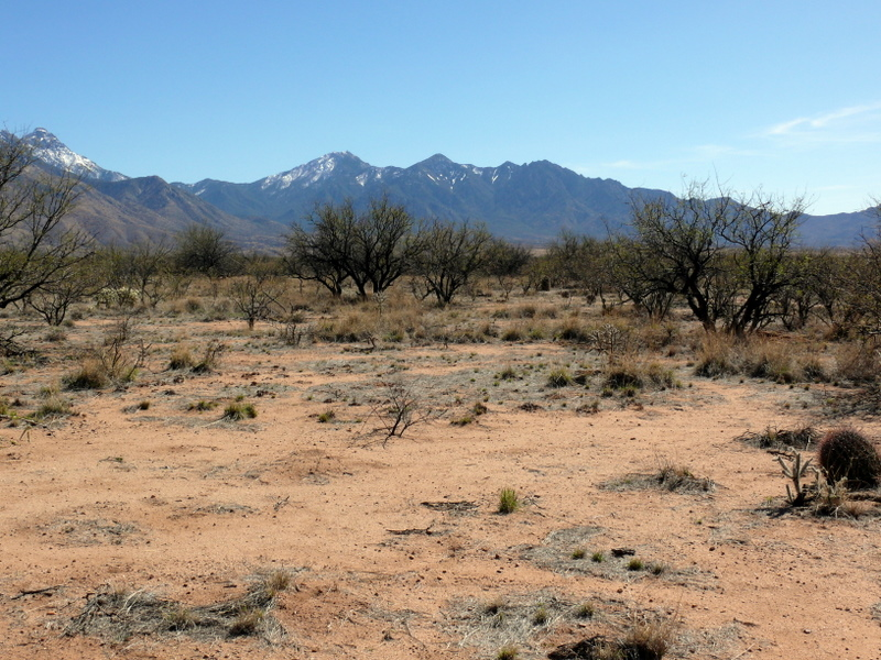 Decomposition in drylands: Soil erosion and UV interactions