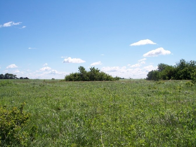 Consequences of Long-Term Agriculture and Grassland Restoration in the Tallgrass Prairie