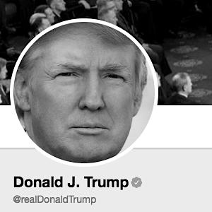 Trump junk news.png
