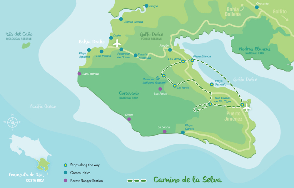 mapa selva.jpg