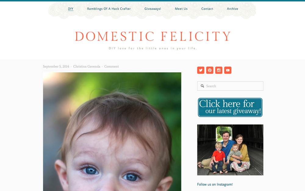 domesticfelicity-home.jpg