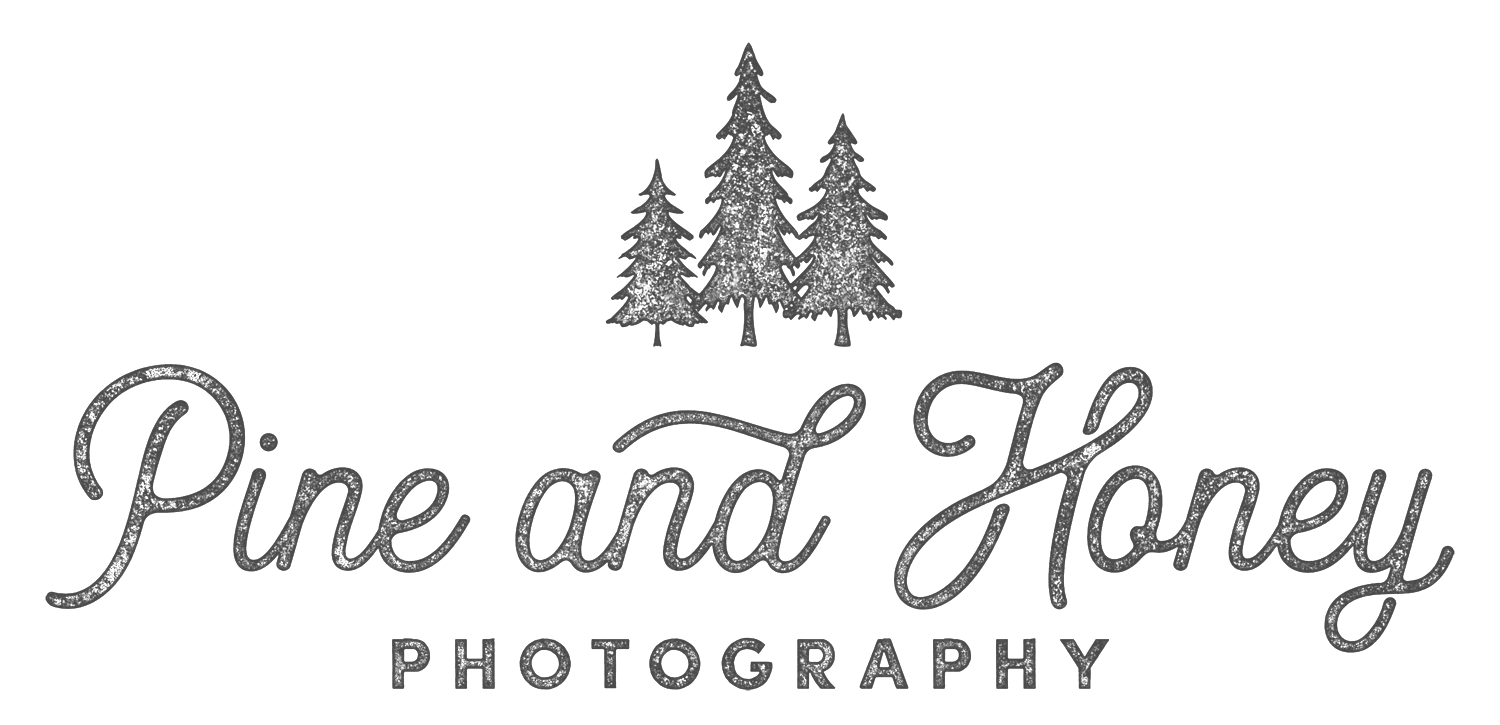 Pine and Honey Photography