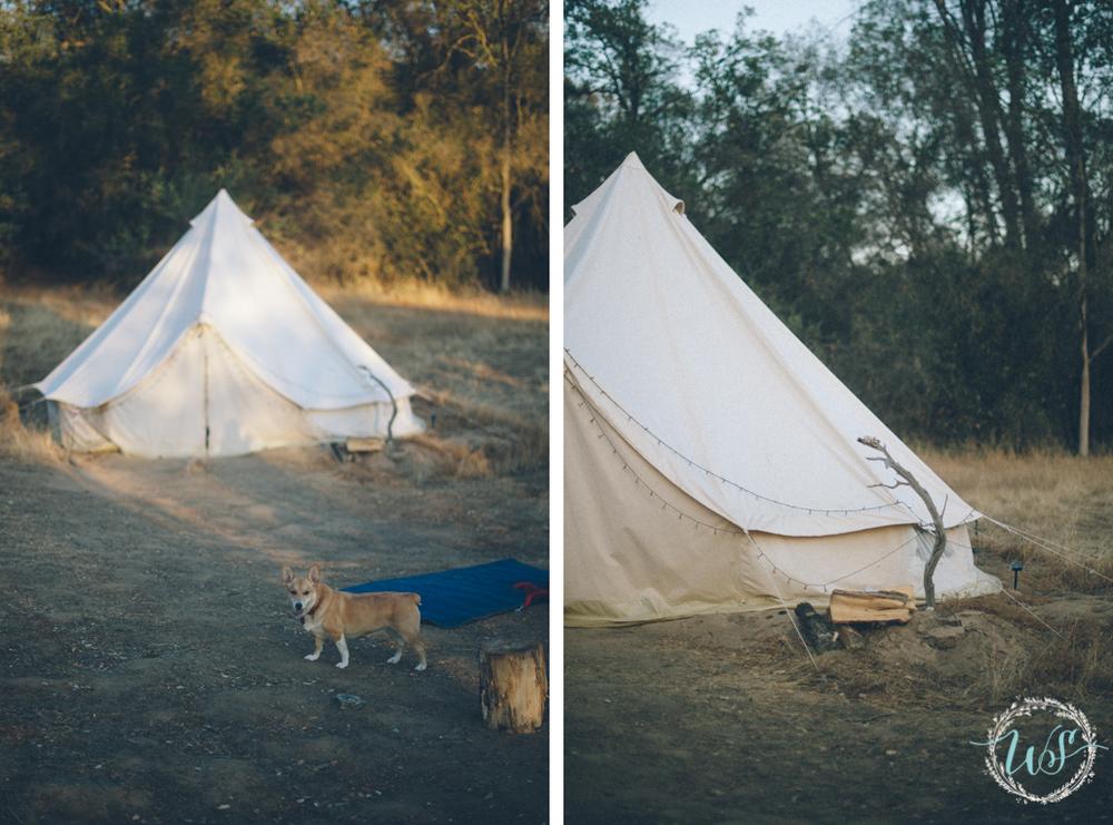 camping_yosemite_belltent.jpg