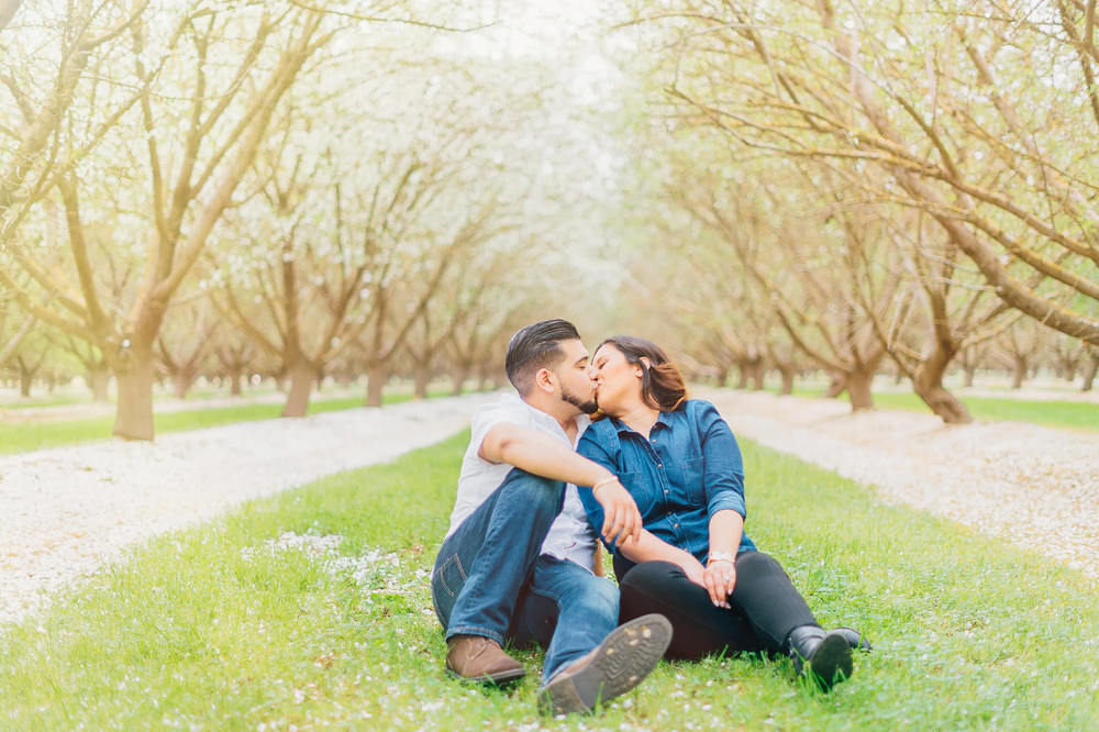 Bakersfield Almond Orchard Photographer  | Wilde Sparrow Photography