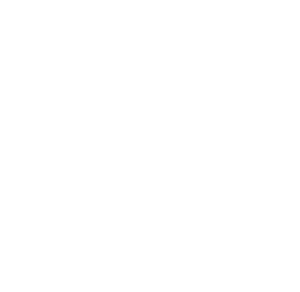 NEC_white.png