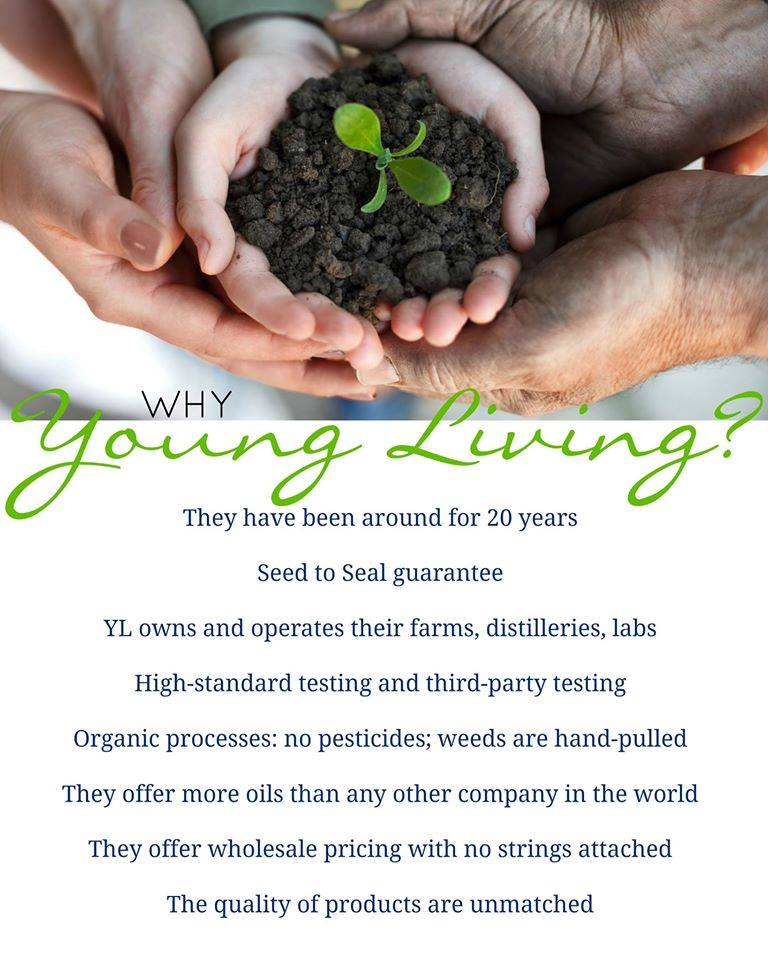why young living.jpg
