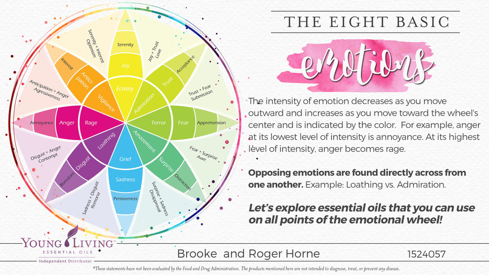 07-Eight-Basic-Emotions-1.jpg