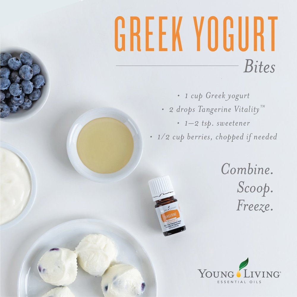 Greek-Yogurt-Bites.jpg