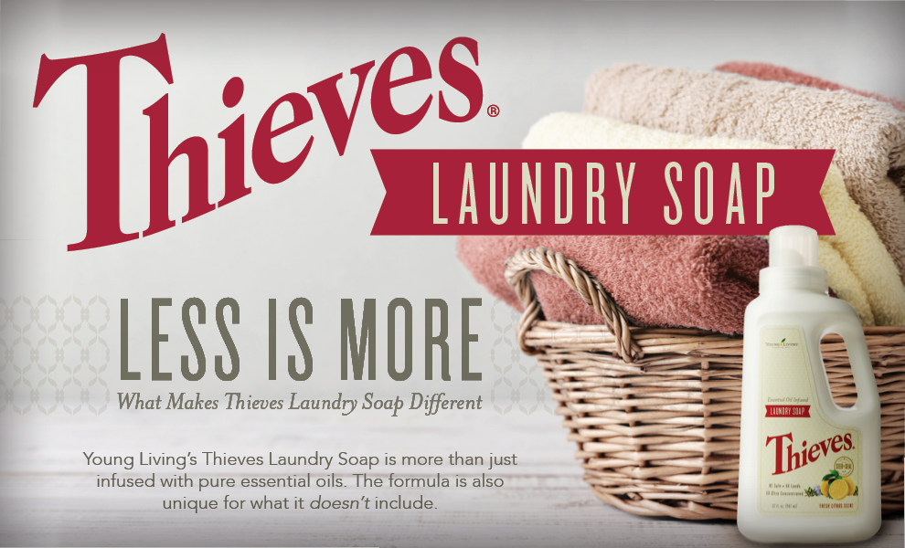 Article-Headers_Thieves-Laundry-Soap.png