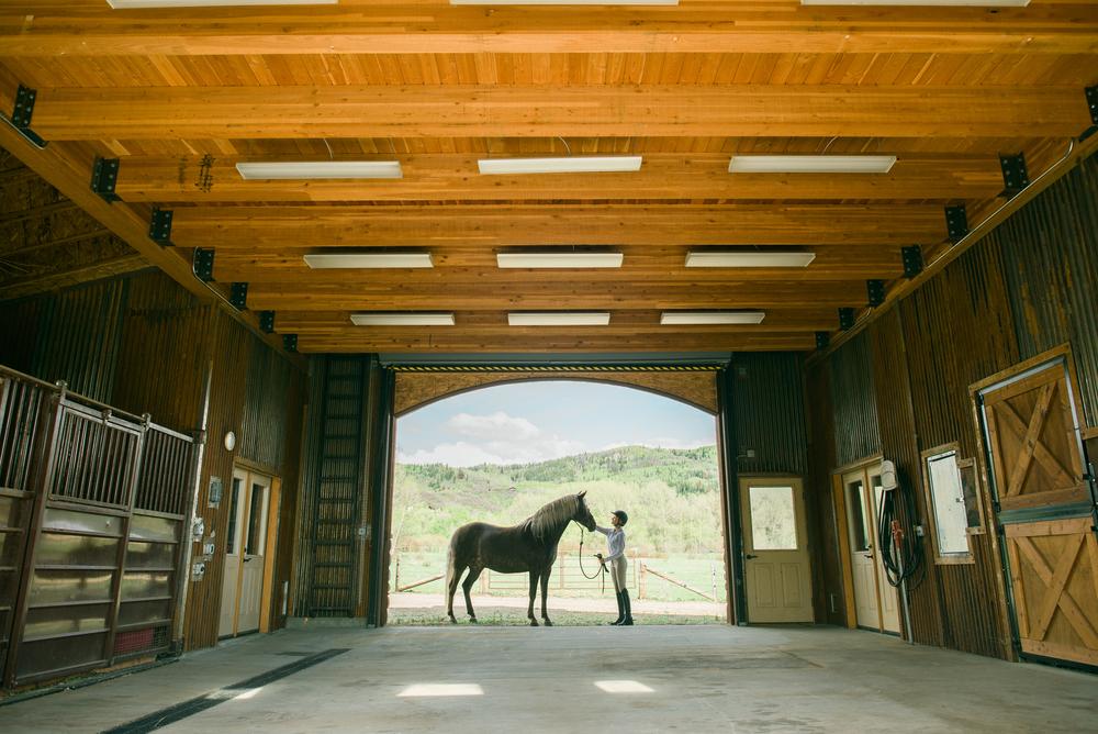 Sotheby's_Equestrian_5-18-15_Photos52371.jpg