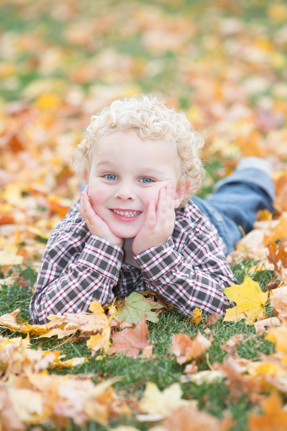 fall leaves cute boy portrait beverly ma .jpg