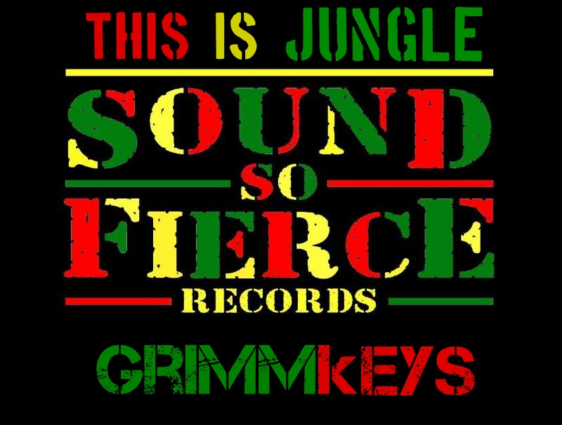 Sound So Fierce Records This Is Jungle GRIMMkEYS Cover_Fotor.jpg