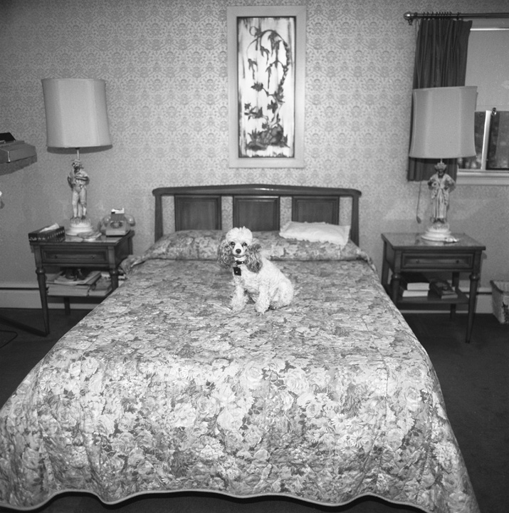 Chammie, Bedroom, Newton, MA, 1974