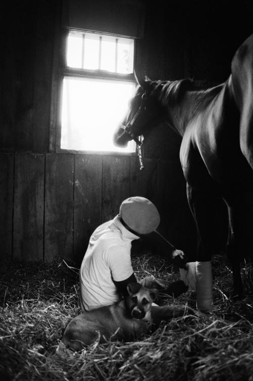 Groom Applying Bandages, Saratoga Race Course, 1985