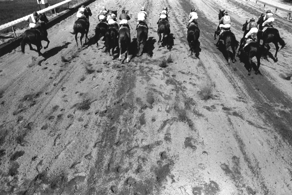 They're Off, Suffolk Downs, 1986