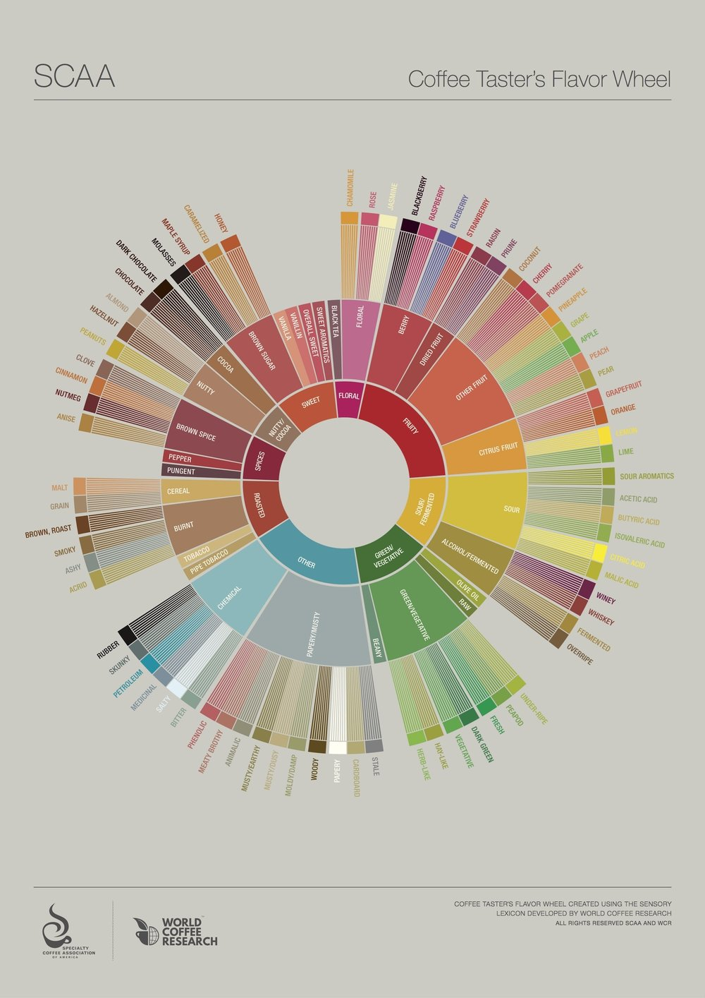 The Coffee Taster's Flavor Wheel by SCAA and WCR (©2016)