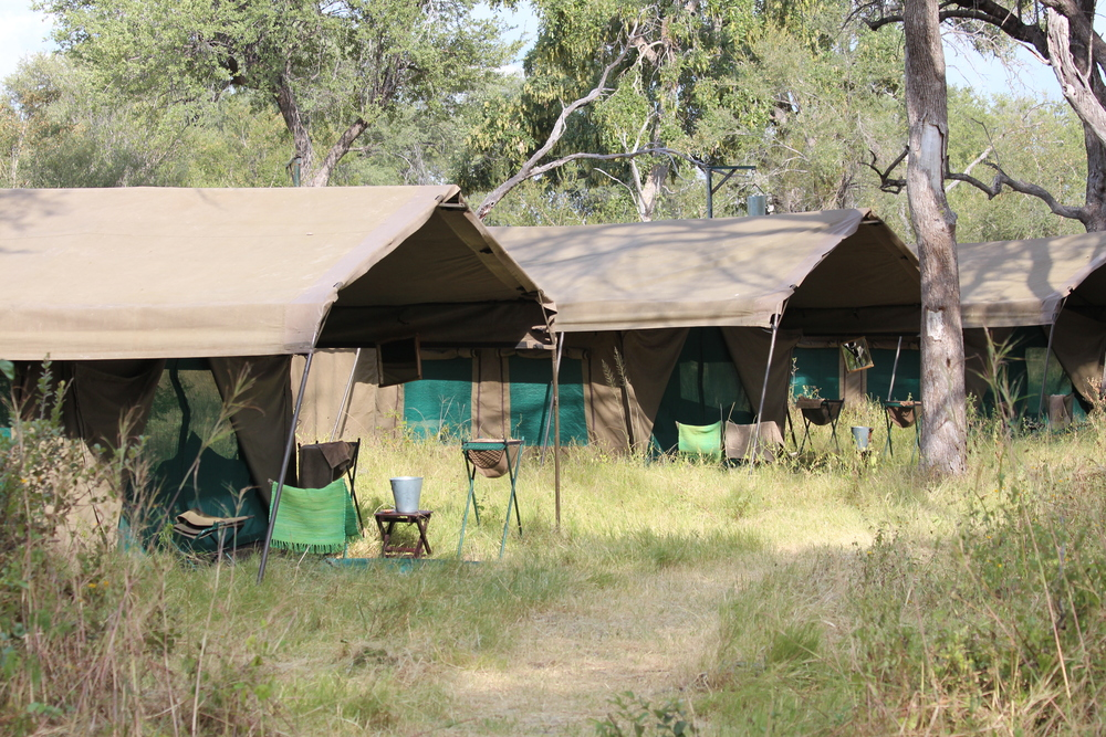 tenting-accommodations-eco-tours-international-all-rights-reserved