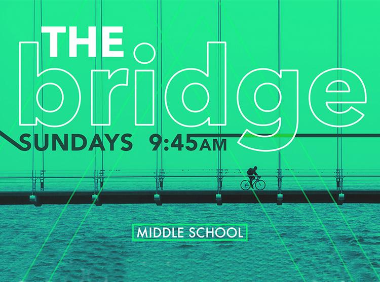 Shoreline The Bridge Between Sundays.jpg