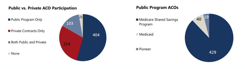 A breakdown in program size shows that participation in the various private and public sector programs is varied.