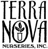 terranova.jpg