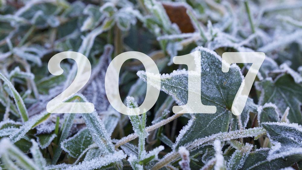 2017 frozen picture