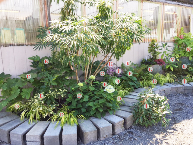 shade display garden copy2.jpg